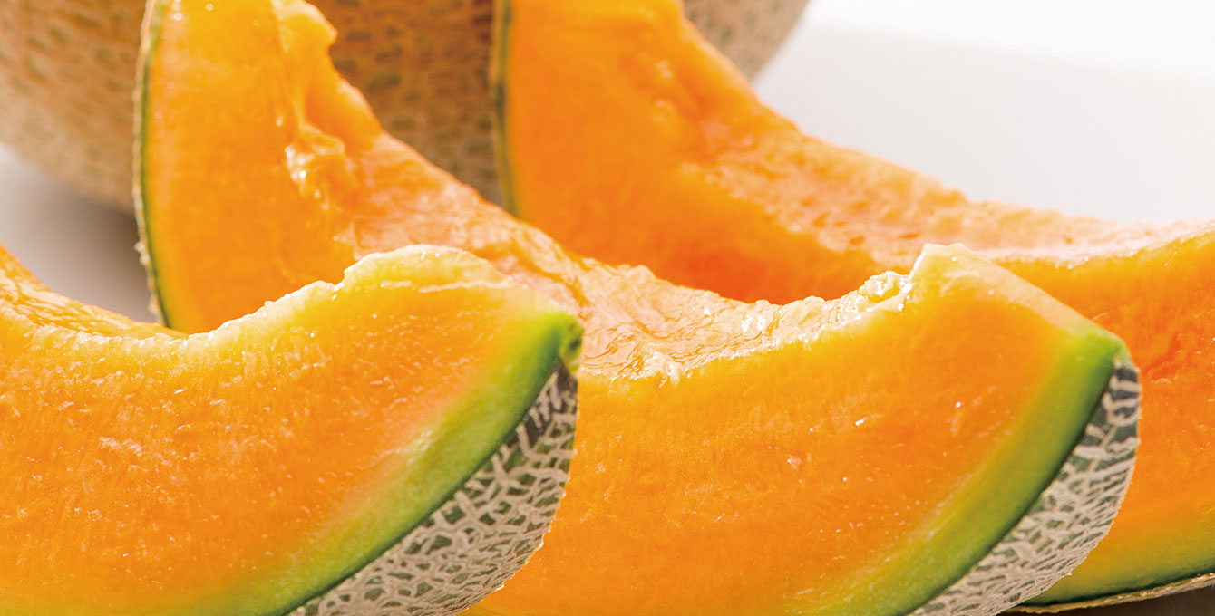 Asahi Melons