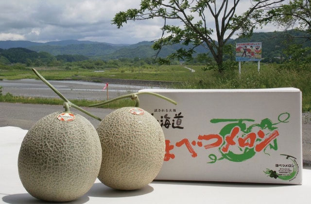 Hobetsu Melons