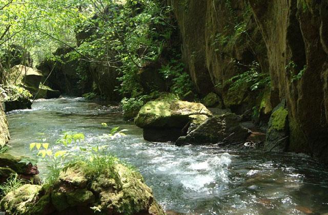 Mt. Tarumae Gallo (gully)